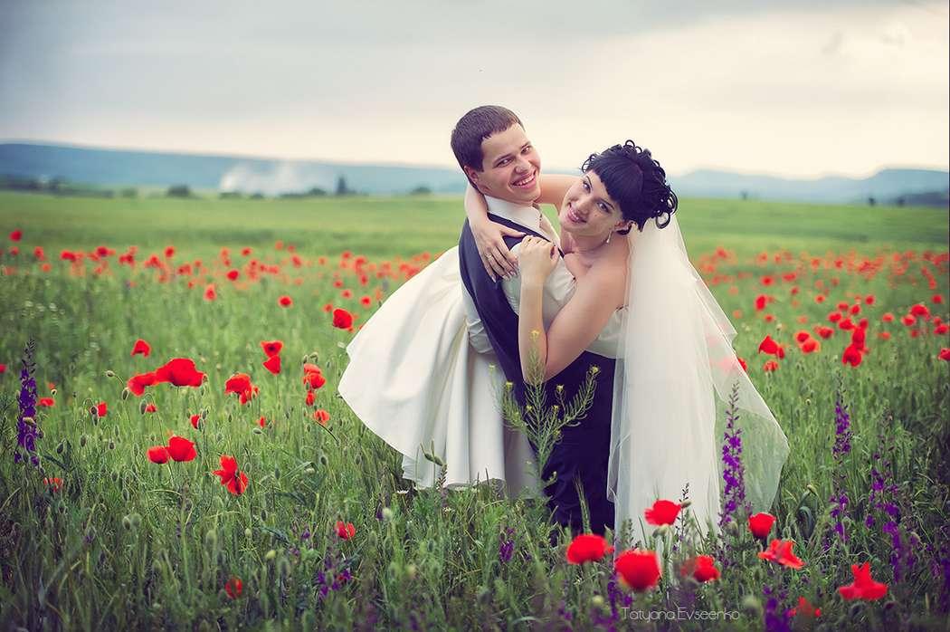 Фото 2642601 в коллекции Наш день... - Татьяна Евсеенко - фотостудия Танго