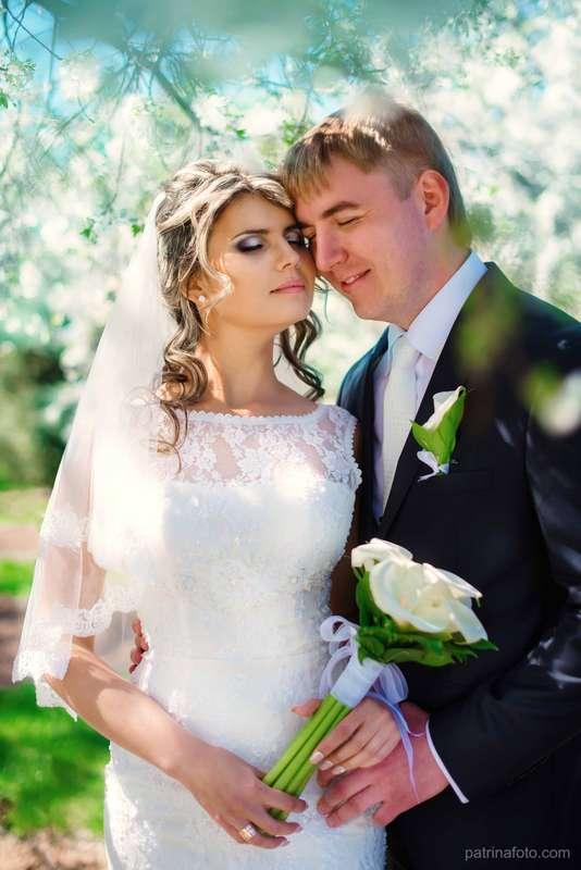 Фото 2642045 в коллекции Свадебные фото. - Свадебный фотограф Евгения Патрина