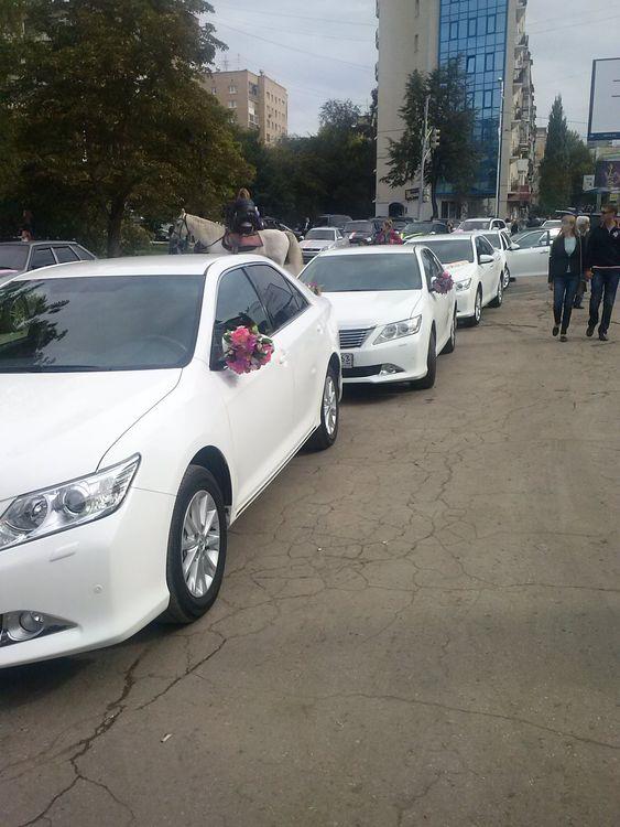 Vip такси, такси, кортеж, украшения - объявление n 22093298 (саратов)