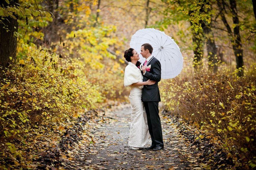 Фото 2682061 в коллекции свадебный - Свадебный и семейный фотограф Константин Тараскин