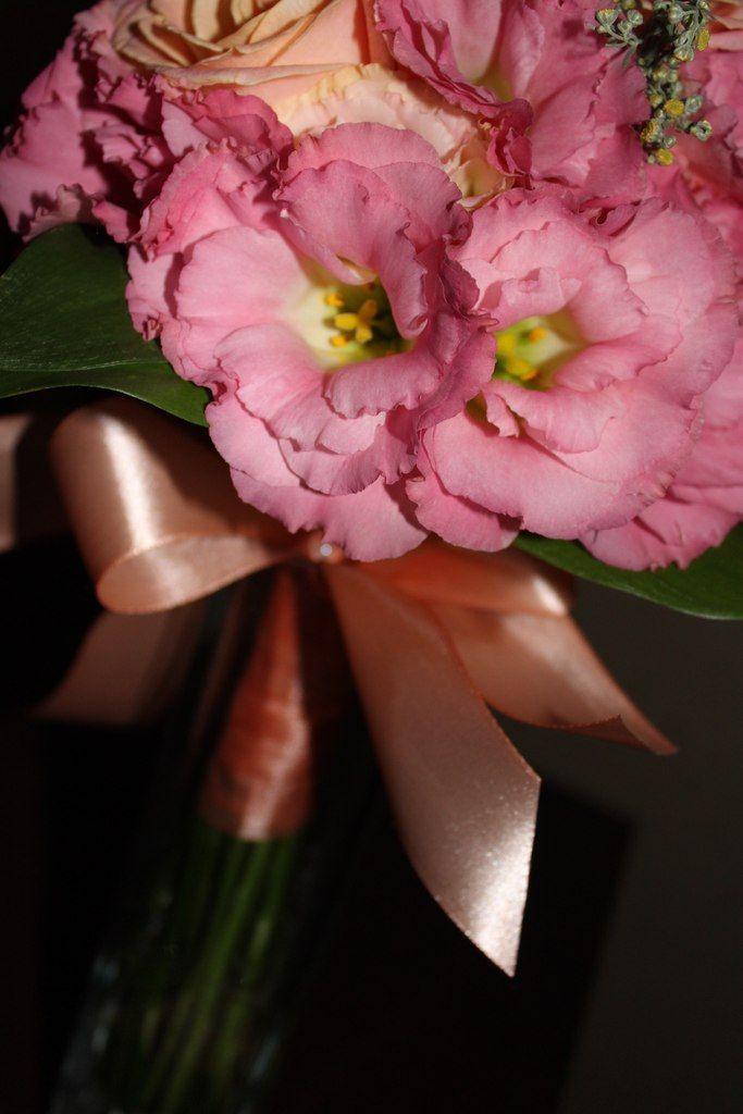 Фото 2730767 в коллекции Мои фотографии - Креативная мастерская Лучший день - оформление