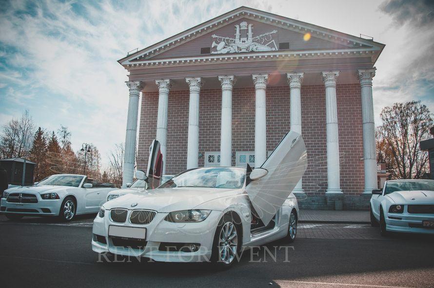 Аренда авто BMW Lambo style