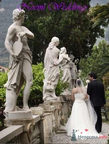Фото 19011 в коллекции Мои фотографии - Noemi Weddings - организация свадеб в Италии