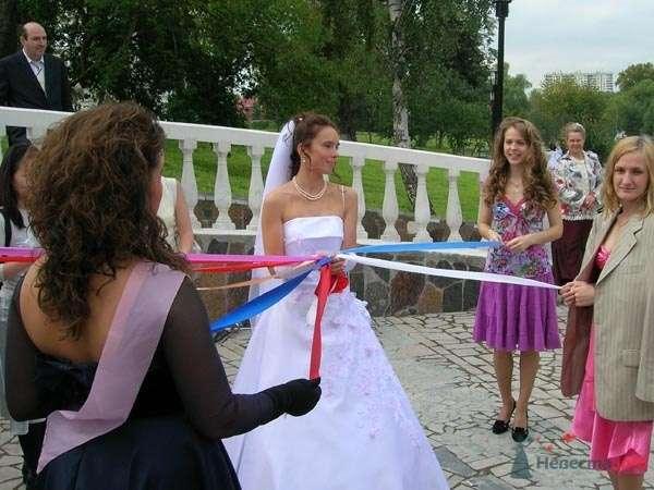 """организация свадебных прогулок - фото 27991 """"Funday"""" - организация мероприятий"""