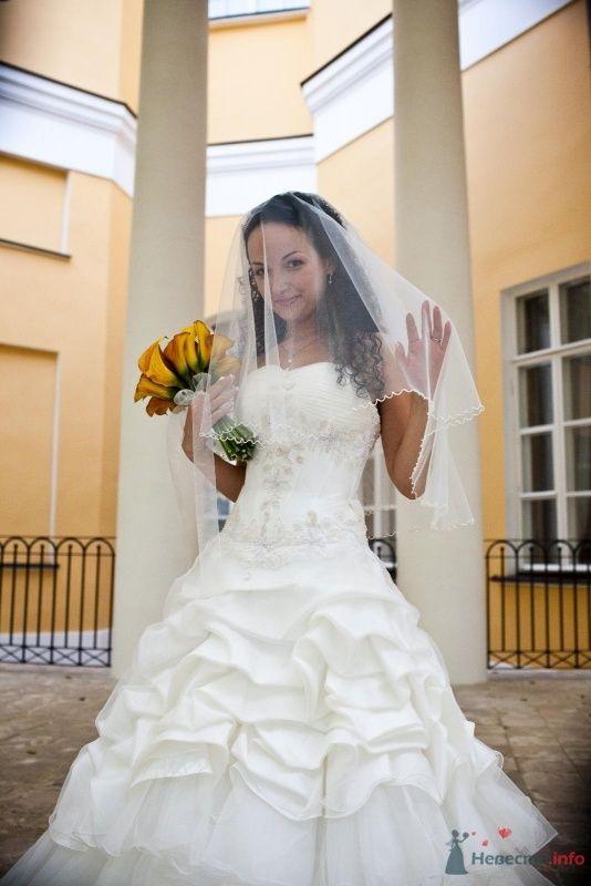 Фото 46650 в коллекции наша свадьба - Pantera25