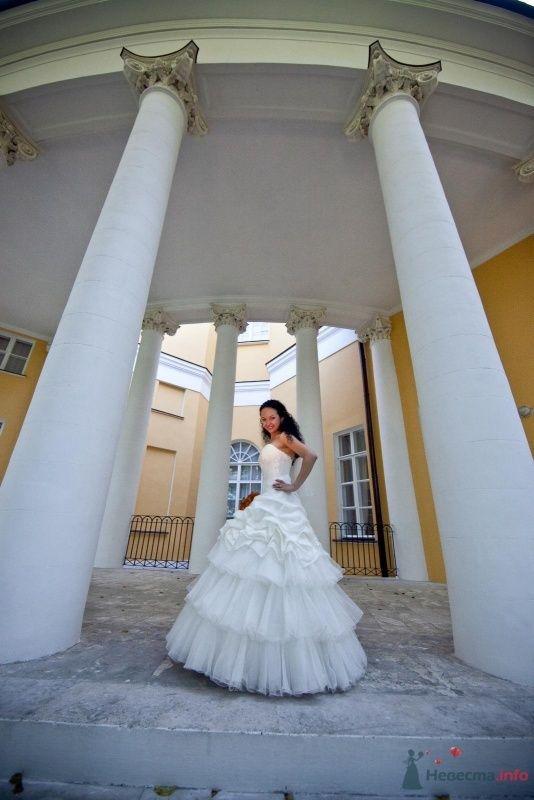 Фото 46652 в коллекции наша свадьба