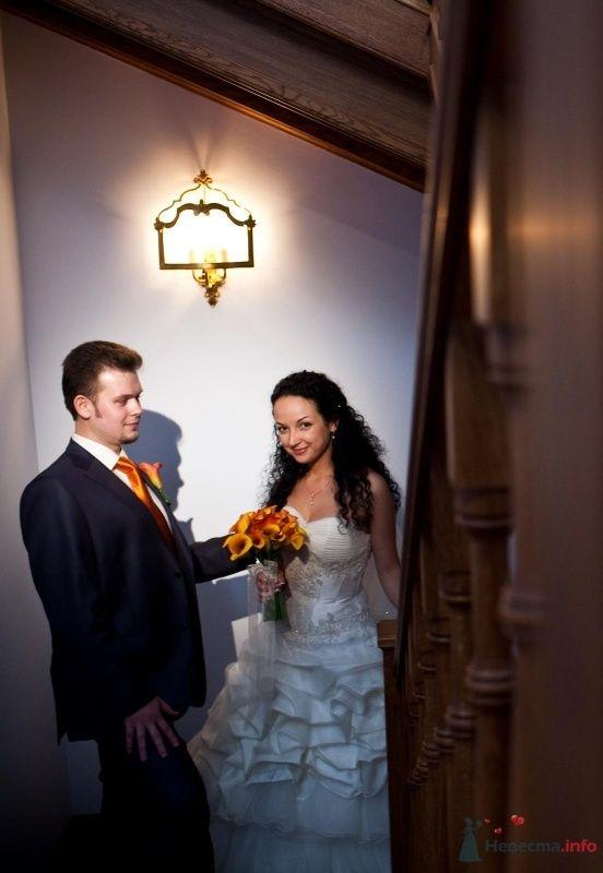 Фото 46670 в коллекции наша свадьба