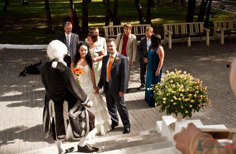 Фото 46672 в коллекции наша свадьба - Pantera25