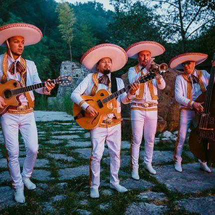 Серенада от мексиканских марьячи