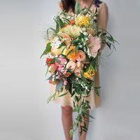 амариллис, хризантема, пионовидные розы, тюльпаны, нарциссы