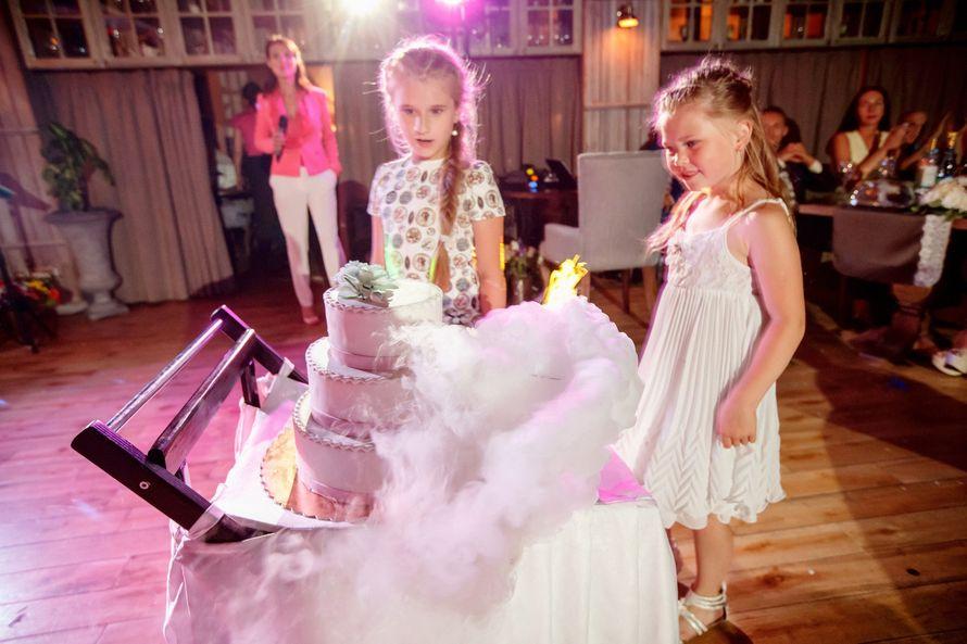Роскошная свадьба Евгения и Ирины - фото 9593074 Ведущая Наталья Смирнова