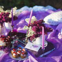 lilac love story, сирень