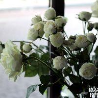 Цветы, чтобы радовать глаз и поднимать настроение