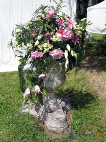 """Фото 17826 в коллекции Арки, уличное оформление - Галерея цветов """"L'Rose"""""""