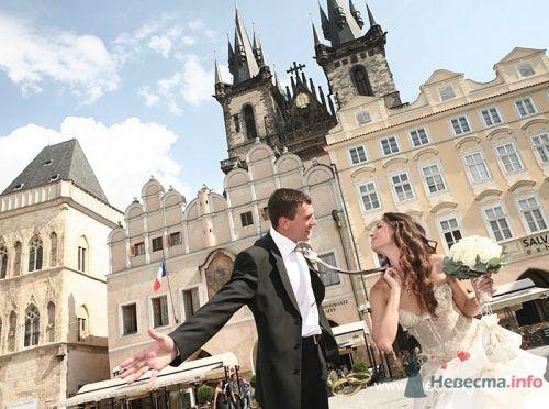 Фото 17808 в коллекции Свадьбы в Чехии - Невеста01