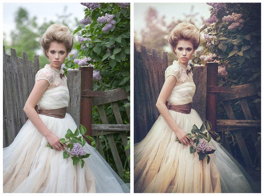 баклан, норовящий как добиться чистых цветов на фотографии дом, дачу или