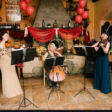 Струнный ансамбль на свадьбу