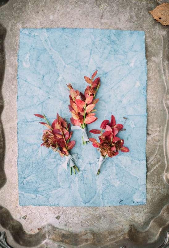 Фото 9561906 в коллекции Autumn palette - Фотограф Леонид Евсеев
