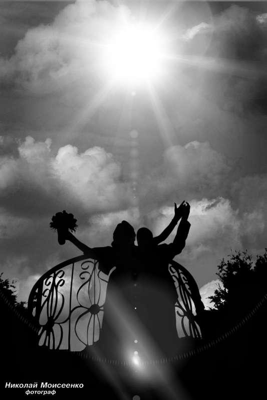 Фото 3102531 в коллекции Мои фотографии - Свадебный фотограф Николай Моисеенко