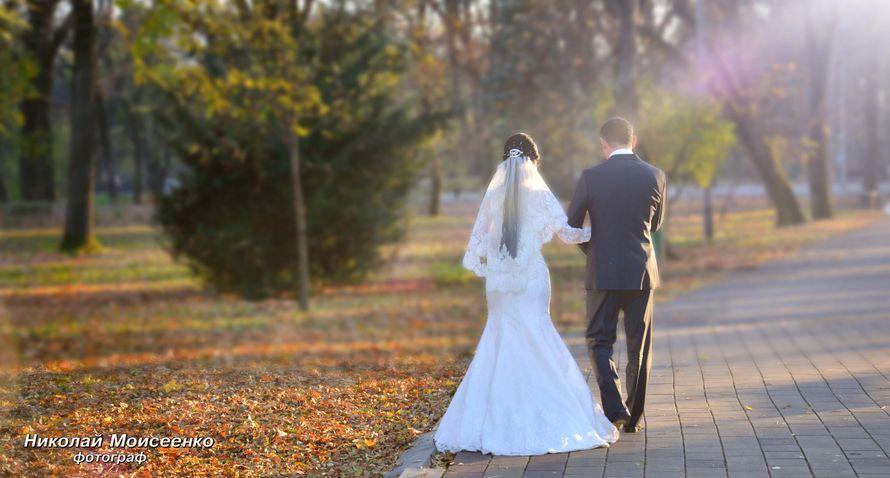 Фото 3102533 в коллекции Мои фотографии - Свадебный фотограф Николай Моисеенко