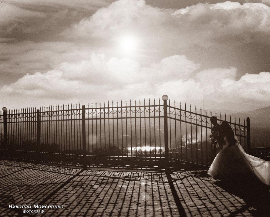 Фото 3102535 в коллекции Мои фотографии - Свадебный фотограф Николай Моисеенко
