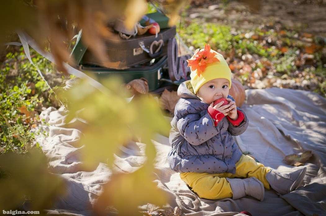 Оформление детских и семейных фотосессий в Актау - фото 3145197 Студия декора Люси Пасмурной
