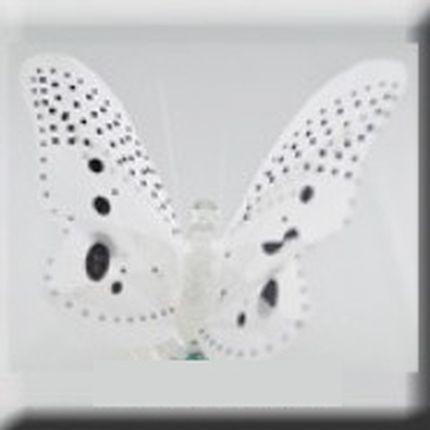 Белая светящаяся бабочка