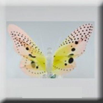 Желтая светящаяся бабочка