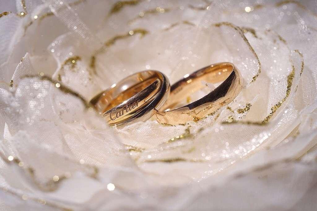 картинки обручальные кольца на подушечке сможете