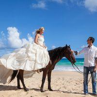 жених и невеста, съемка в Доминикане,  пляж Макао, океан, улыбка, любовь, счастье, лошадь