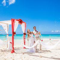 свадьба на острове Саона, Доминикана, любовь , свадьба, счастье, шампанское