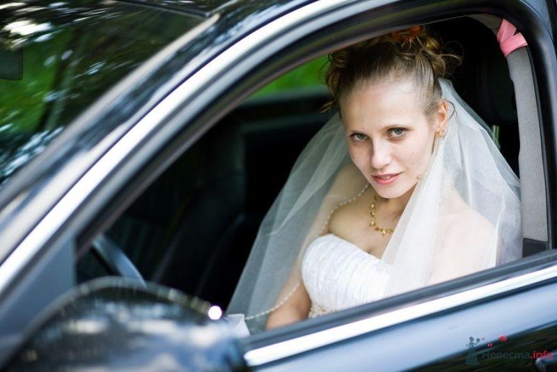 Фото 59808 в коллекции Свадьба - Max&Kate