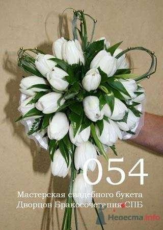белые тюльпанчики - фото 19262 Невеста01