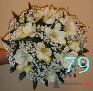 белые фрезии - фото 19263 Невеста01