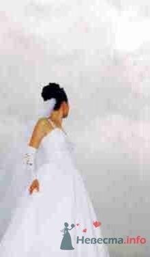 Фото 19843 в коллекции Свадебный-T - Невеста01