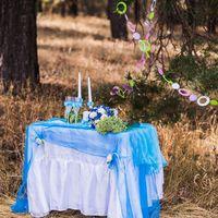 Небесно-голубая свадьба Анастасии и Алексея
