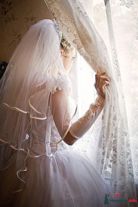Фото 210715 в коллекции Фотографии со свадеб - Портрет-холл. Студия фотопортрета.