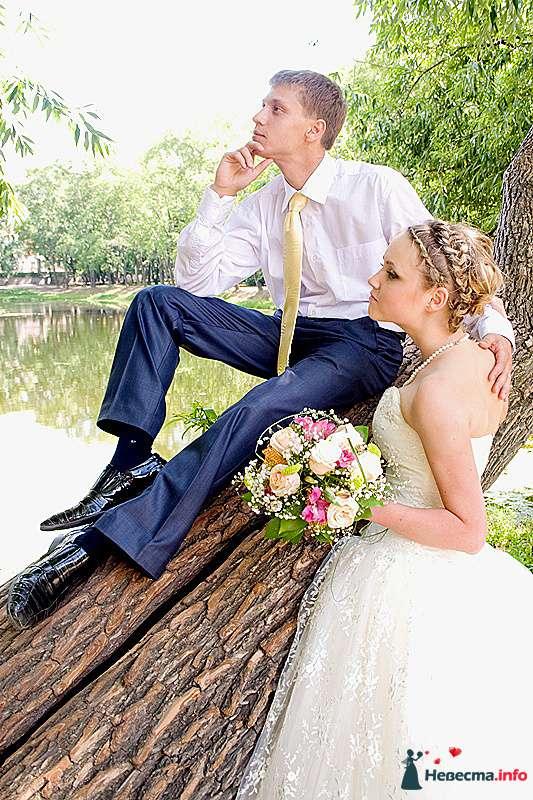 Фото 210724 в коллекции Фотографии со свадеб - Портрет-холл. Студия фотопортрета.