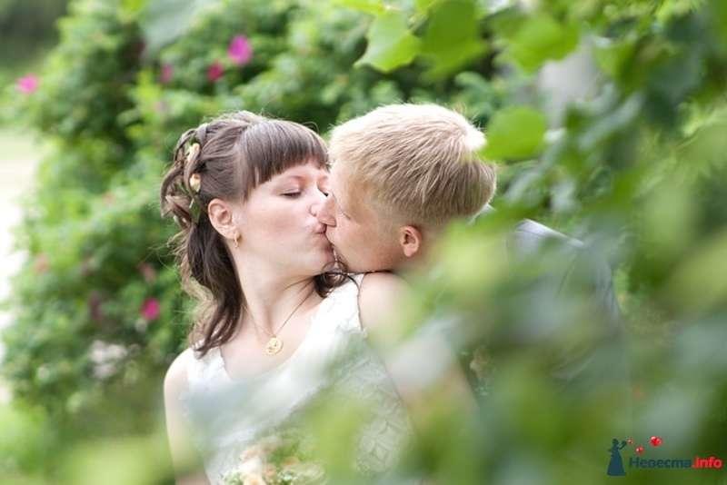 Фотографии с реальной свадьбы - фото 274967 Портрет-холл. Студия фотопортрета.