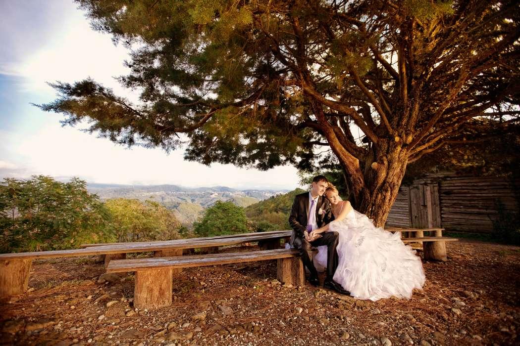 Жених и невеста, прислонившись друг к другу, сидят ан скамье под деревом - фото 3600467 Видеосъемка Сочифильм