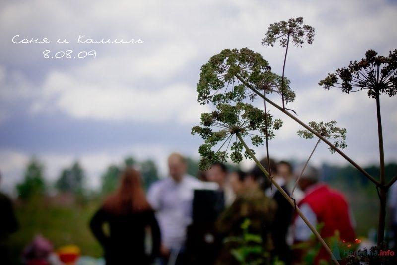 Фото 45567 в коллекции свадебные) - Sonya