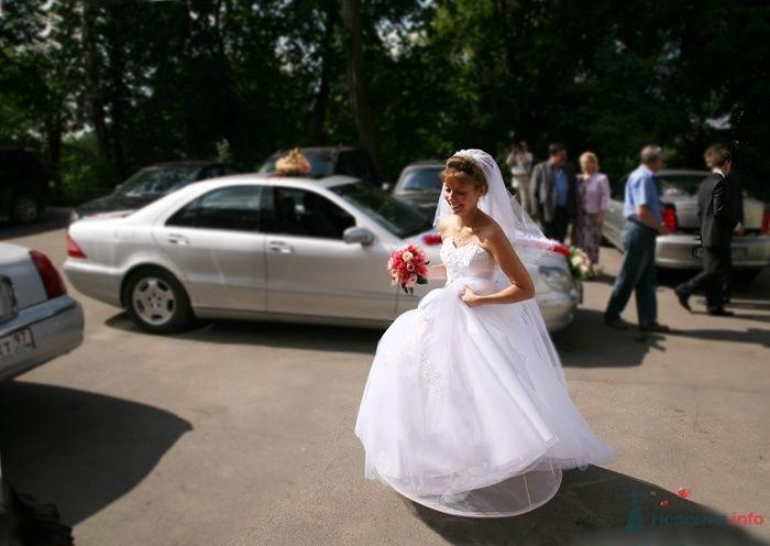 Фото 33003 в коллекции Свадьба   Паши и Маши