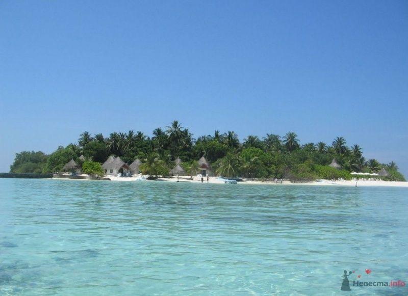 Фото 39733 в коллекции Медовый месяц на Мальдивах
