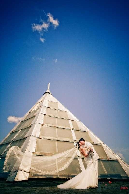 """Фото 49438 в коллекции Wedding или """"Скажи """"Пока"""" своей свободе, Крошка!"""" - Свадебные аксессуары by Оксана Karamelnaya"""