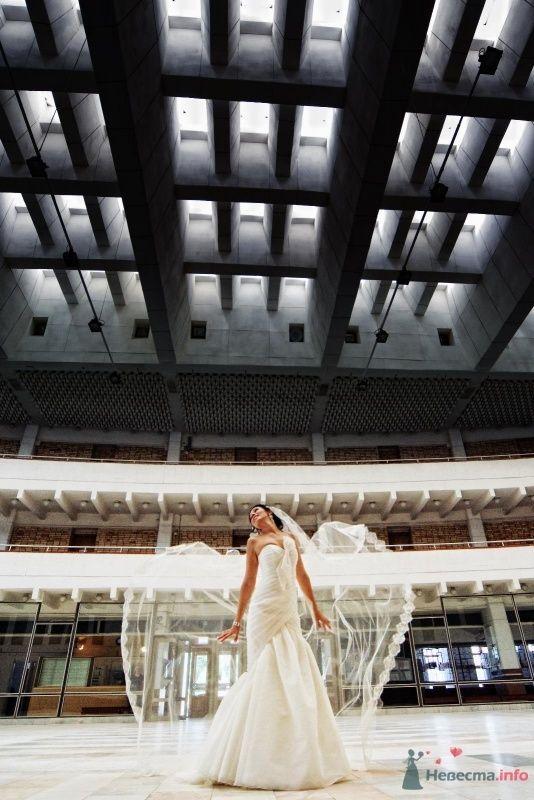 """Фото 49521 в коллекции Wedding или """"Скажи """"Пока"""" своей свободе, Крошка!"""""""