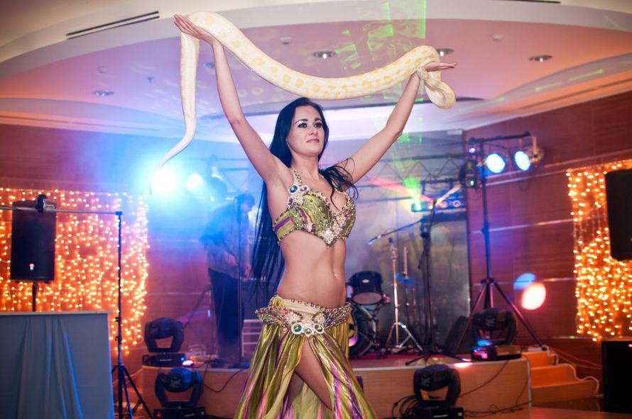 Шоу-программа танцовщицы