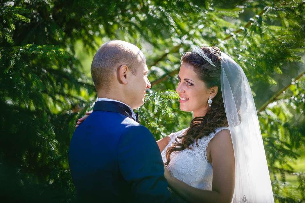 Жених и невеста смотрят друг на друга, вокруг них сосновые ветки  - фото 3650321 Фотограф Дмитрий Мельников