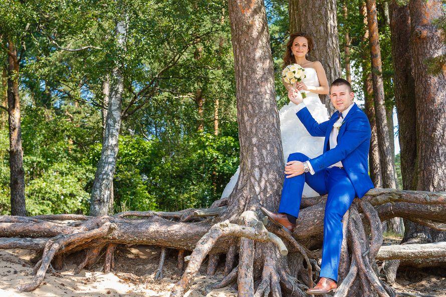 Жених и невеста стоят вместе в лесу, опираясь на большое сухое дерево - фото 3650335 Фотограф Дмитрий Мельников