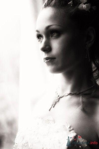 Фото 58490 в коллекции 1 - Сергей Панфилов