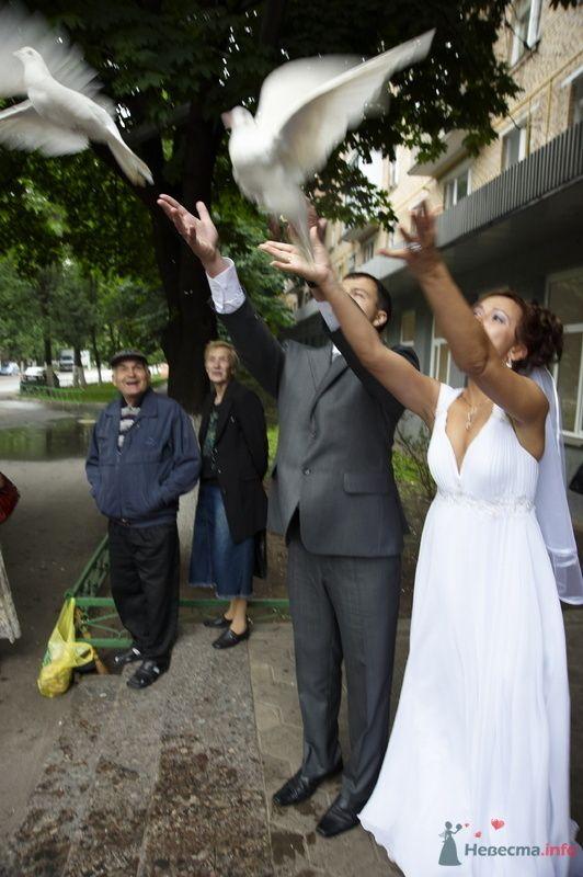 Фото 72130 в коллекции Моя скромная свадьба - невеста лето 2009